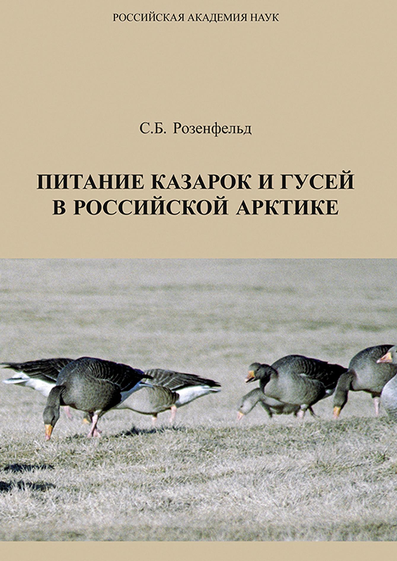 Питание казарок и гусей в Российской Арктике