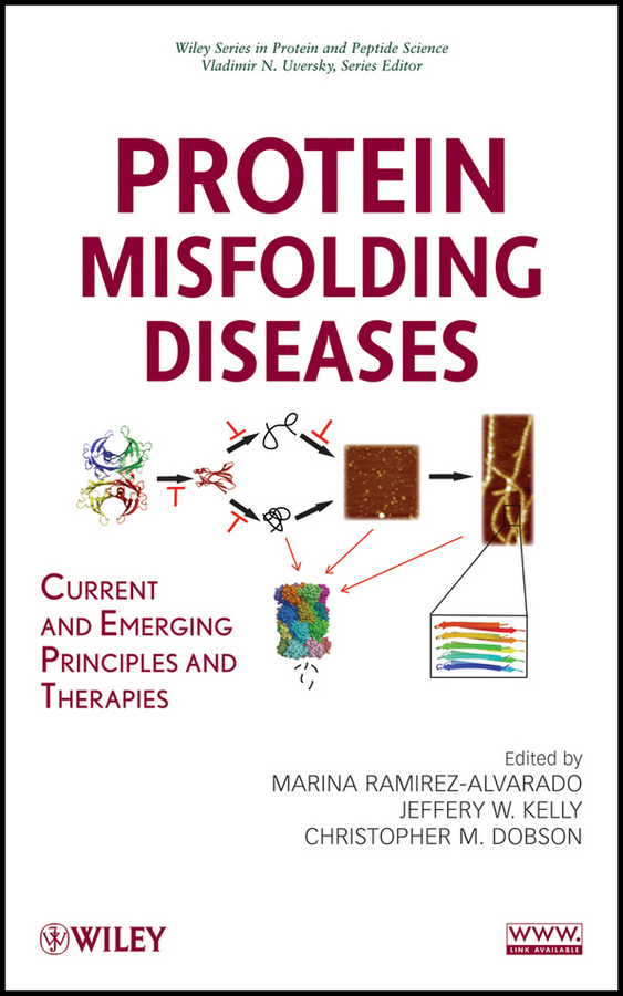 Protein Misfolding Diseases. Current and Emerging Principles and Therapies