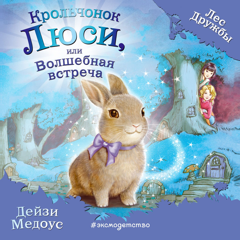 Крольчонок Люси, или Волшебная встреча
