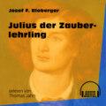 Julius der Zauberlehrling (Ungekürzt)