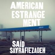 American Estrangement - Stories (Unabridged)