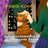 Жизнь кота