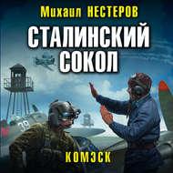Сталинский сокол. Комэск