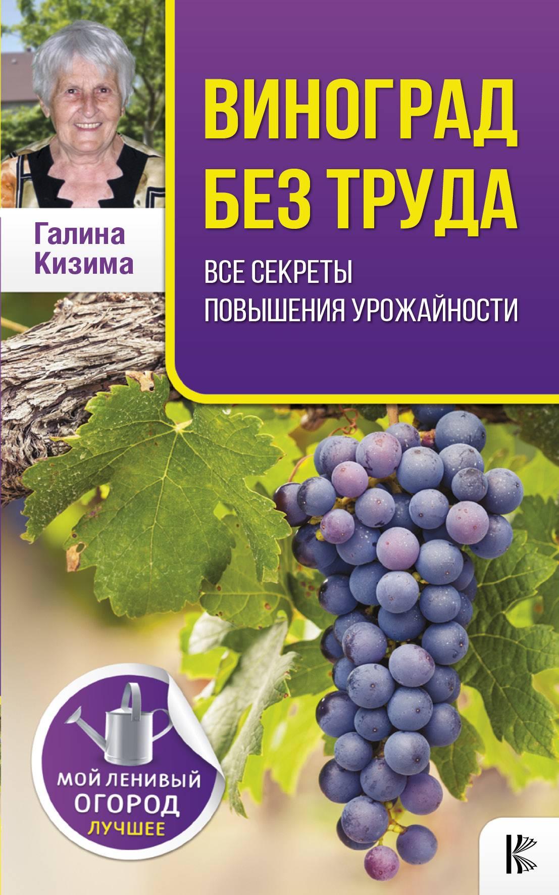Галина Кизима Виноград без труда цена