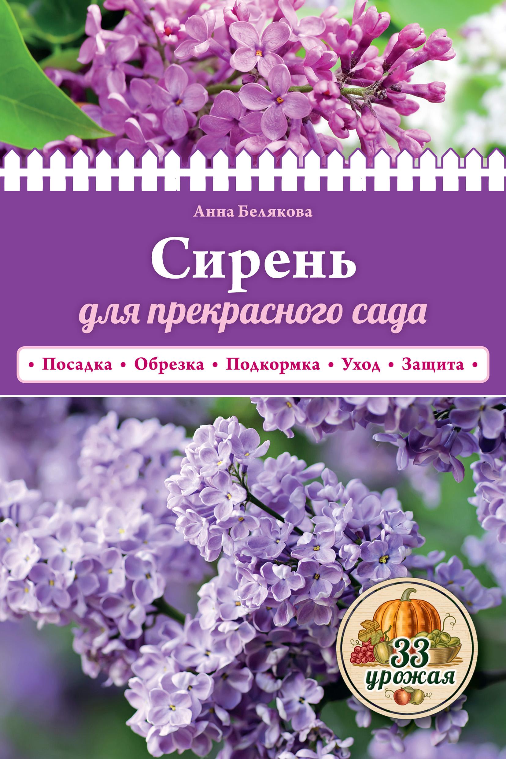 Анна Белякова Сирень для прекрасного сада белякова а сирень для прекрасного сада посадка обрезка подкормка уход защита