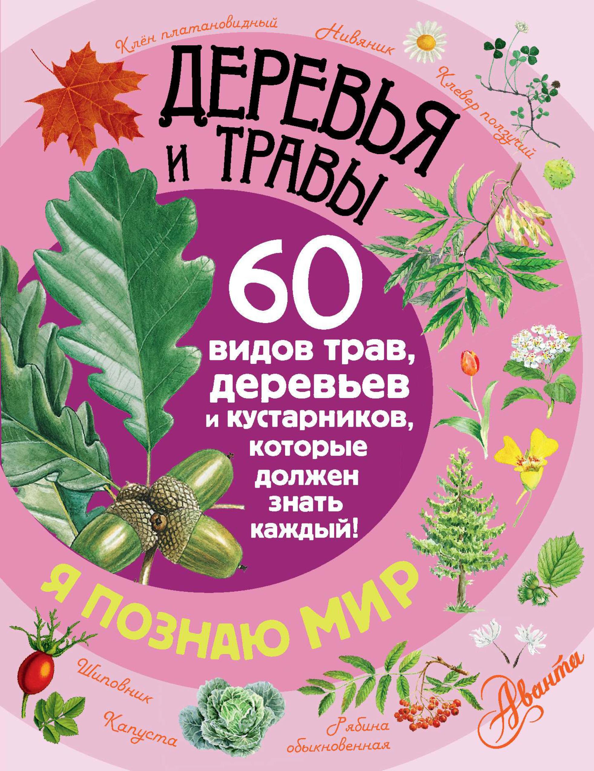П. М. Волцит Деревья и травы. 60 видов трав, деревьев и кустарников, которые должен знать каждый п м волцит почему деревья качаются