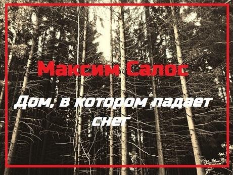 Максим Салос Дом, в котором падает снег