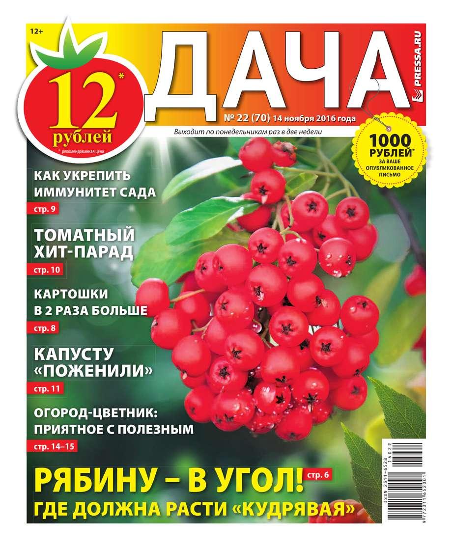 Редакция газеты Дача Pressa.ru Дача Pressa.ru 22-2016 александр левин дача раздора