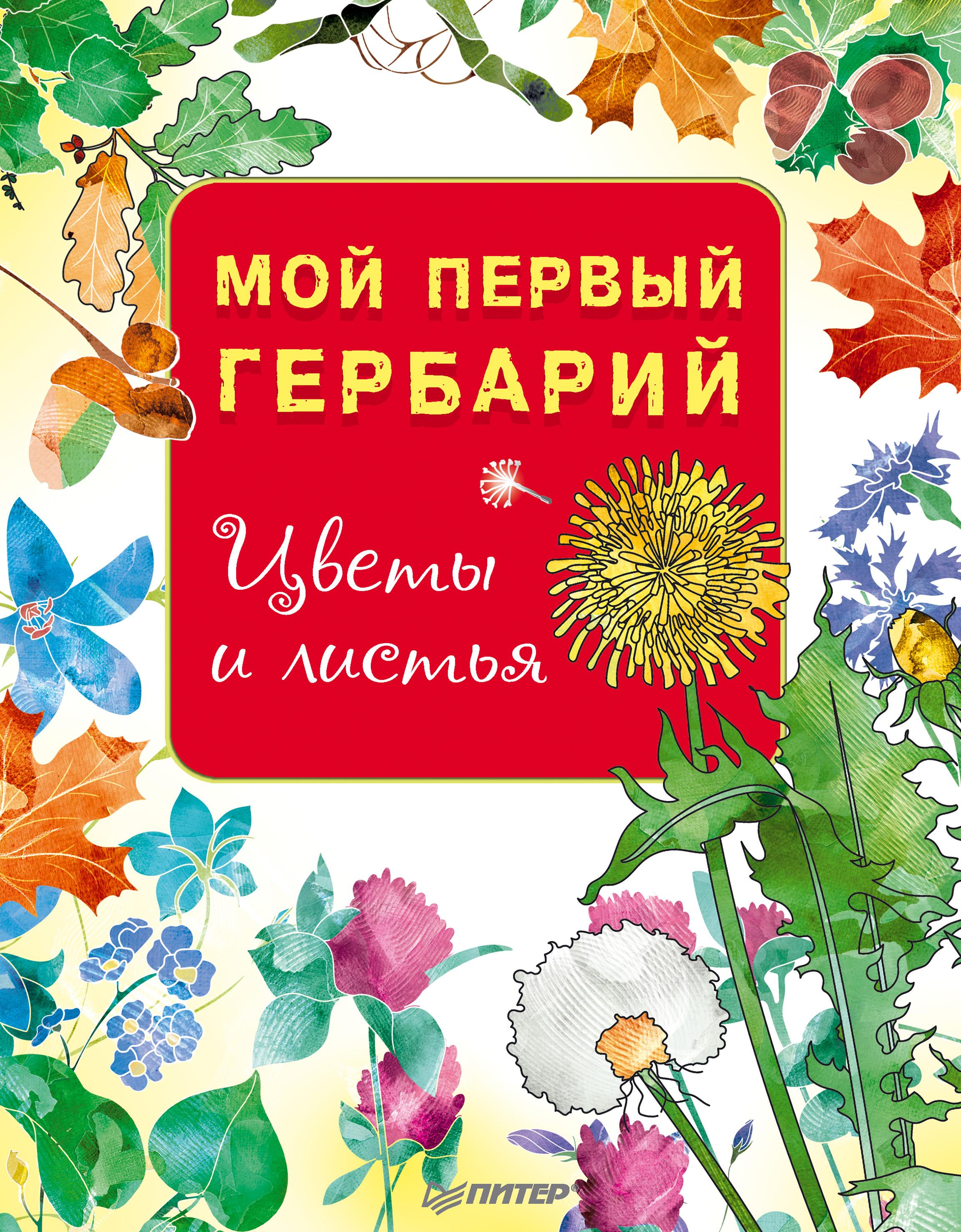 Отсутствует Мой первый гербарий. Цветы и листья анна васильева мой гербарий листья деревьев