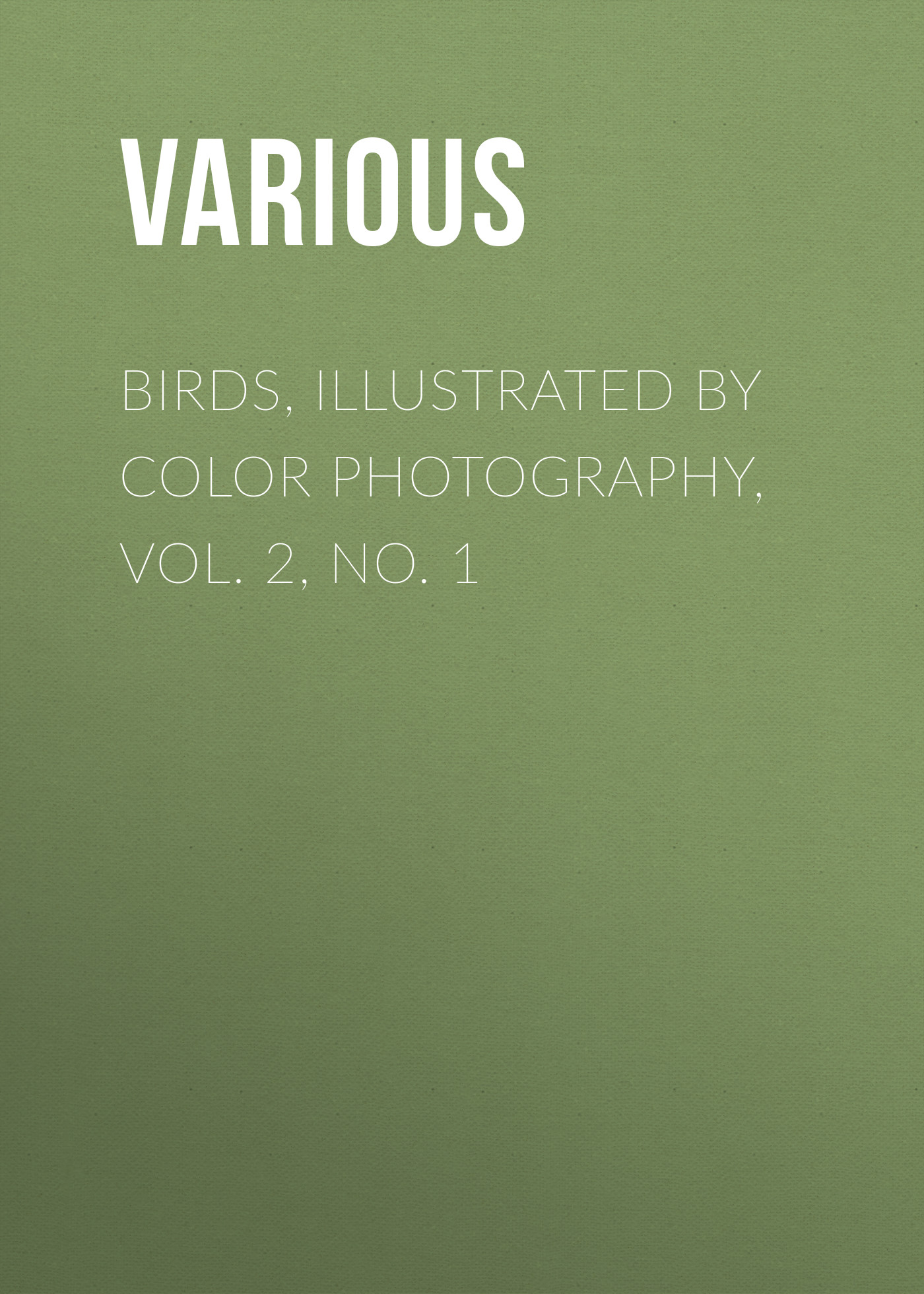 Various Birds, Illustrated by Color Photography, Vol. 2, No. 1 d 6521 dark grey backdrop newborn photography backdrop retro pure color pet photography backgrounds 4x6ft 1 25x2m