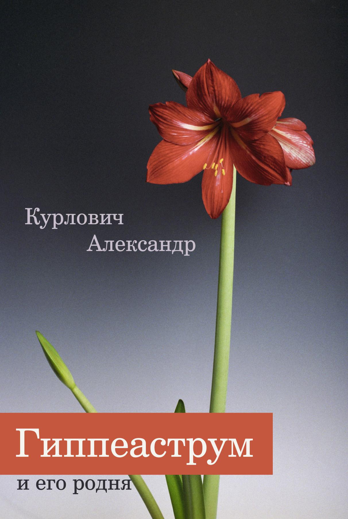 Александр Курлович Гиппеаструм и его родня александр курлович лианы и ампельные