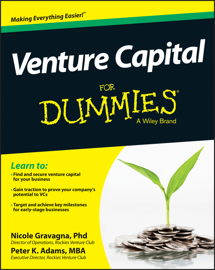 Nicole Gravagna Venture Capital For Dummies orion cup capital 2000