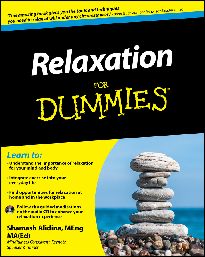 Shamash Alidina Relaxation For Dummies