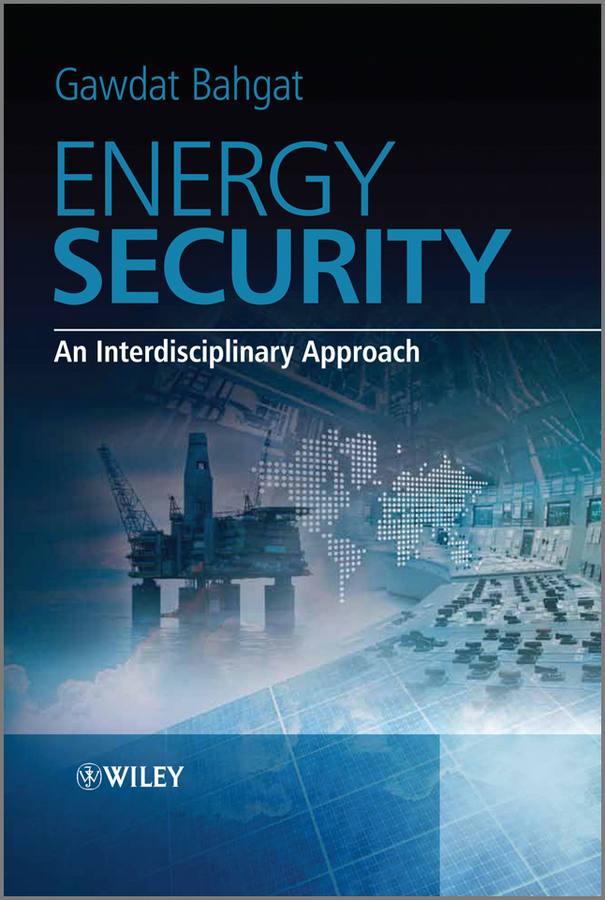 Gawdat Bahgat Energy Security. An Interdisciplinary Approach princeton energy resources international handbook of international electrical safety practices