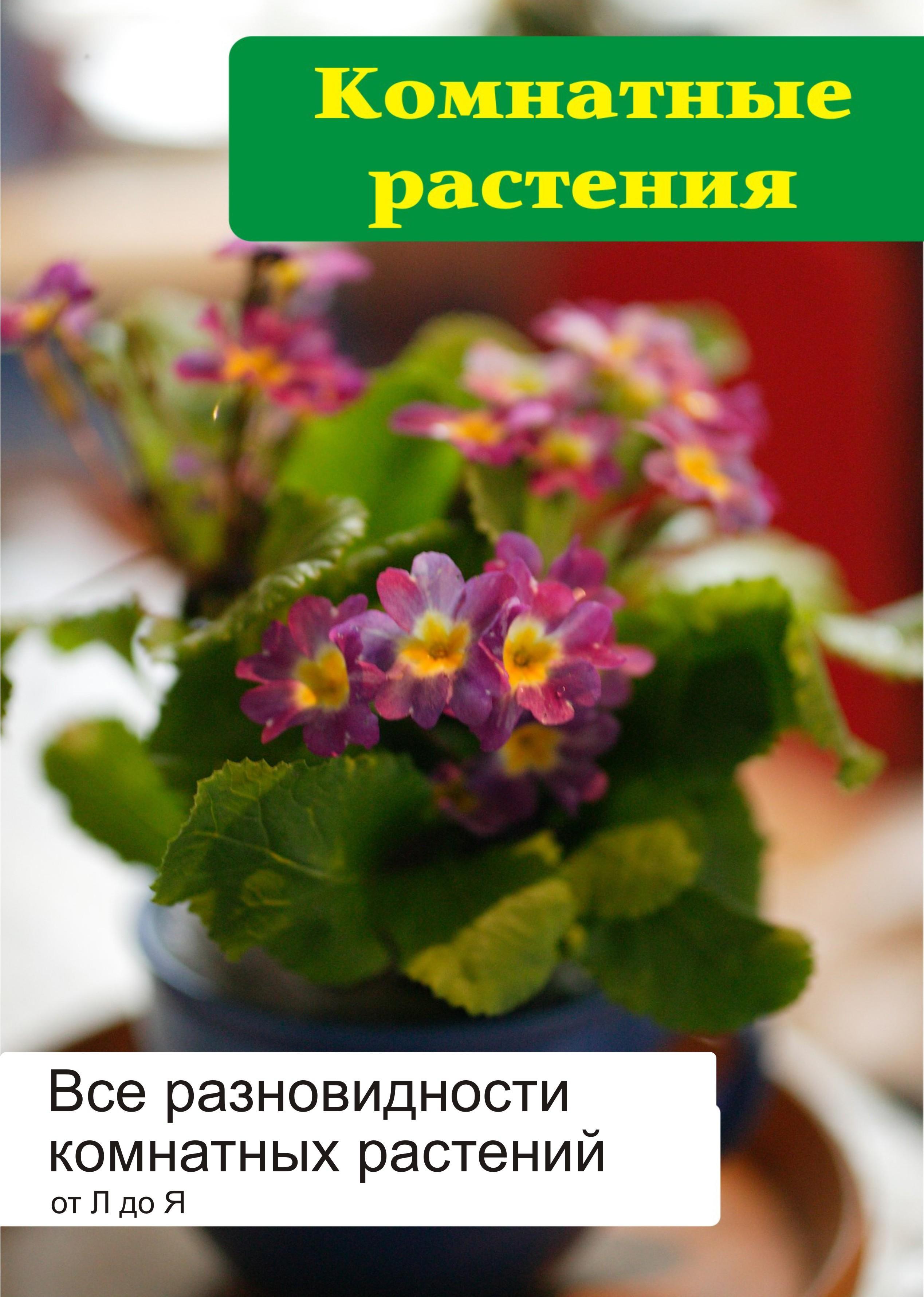 Илья Мельников Все разновидности комнатных растений (от Л до Я) лейка для комнатных растений