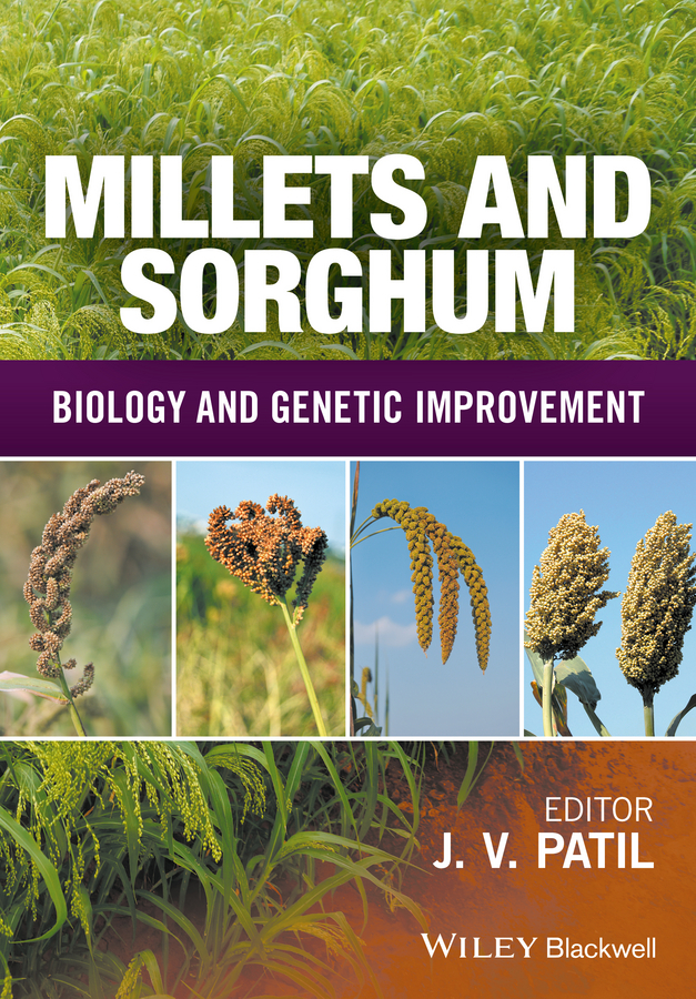 цены Jagannath Patil V. Millets and Sorghum. Biology and Genetic Improvement