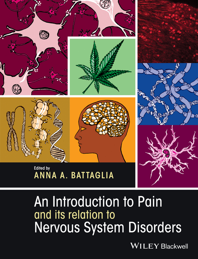 Anna Battaglia A. An Introduction to Pain and its relation to Nervous System Disorders keen pain massager for the pain in knee joint and osteoarthritis knee treatment