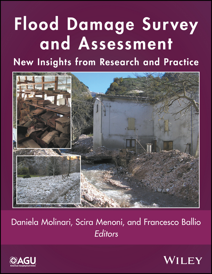 купить Scira Menoni Flood Damage Survey and Assessment. New Insights from Research and Practice по цене 11572.85 рублей
