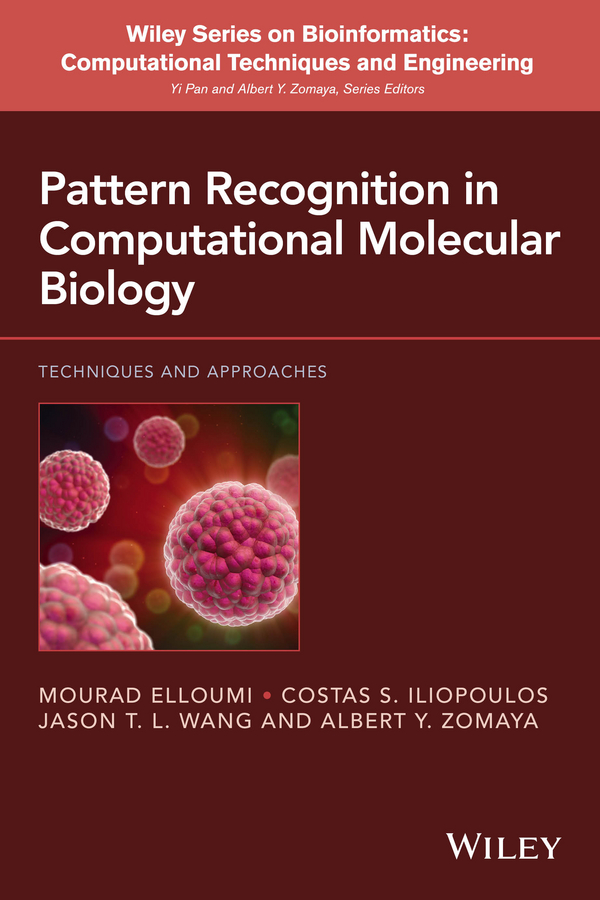 Mourad Elloumi Pattern Recognition in Computational Molecular Biology. Techniques and Approaches santa claus and trees pattern linen pillow case