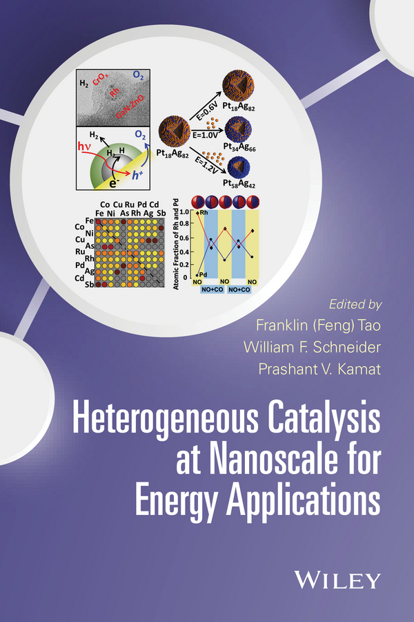 William Schneider F. Heterogeneous Catalysis at Nanoscale for Energy Applications andrzej stankiewicz novel concepts in catalysis and chemical reactors improving the efficiency for the future