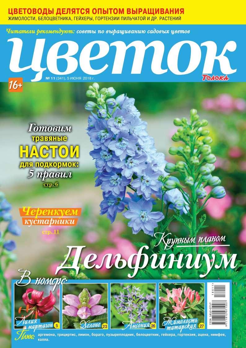 Редакция журнала Цветок Цветок 11-2018 редакция журнала цветок цветок 05 2018