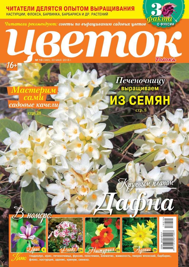 Редакция журнала Цветок Цветок 10-2018 редакция журнала цветок цветок 05 2018