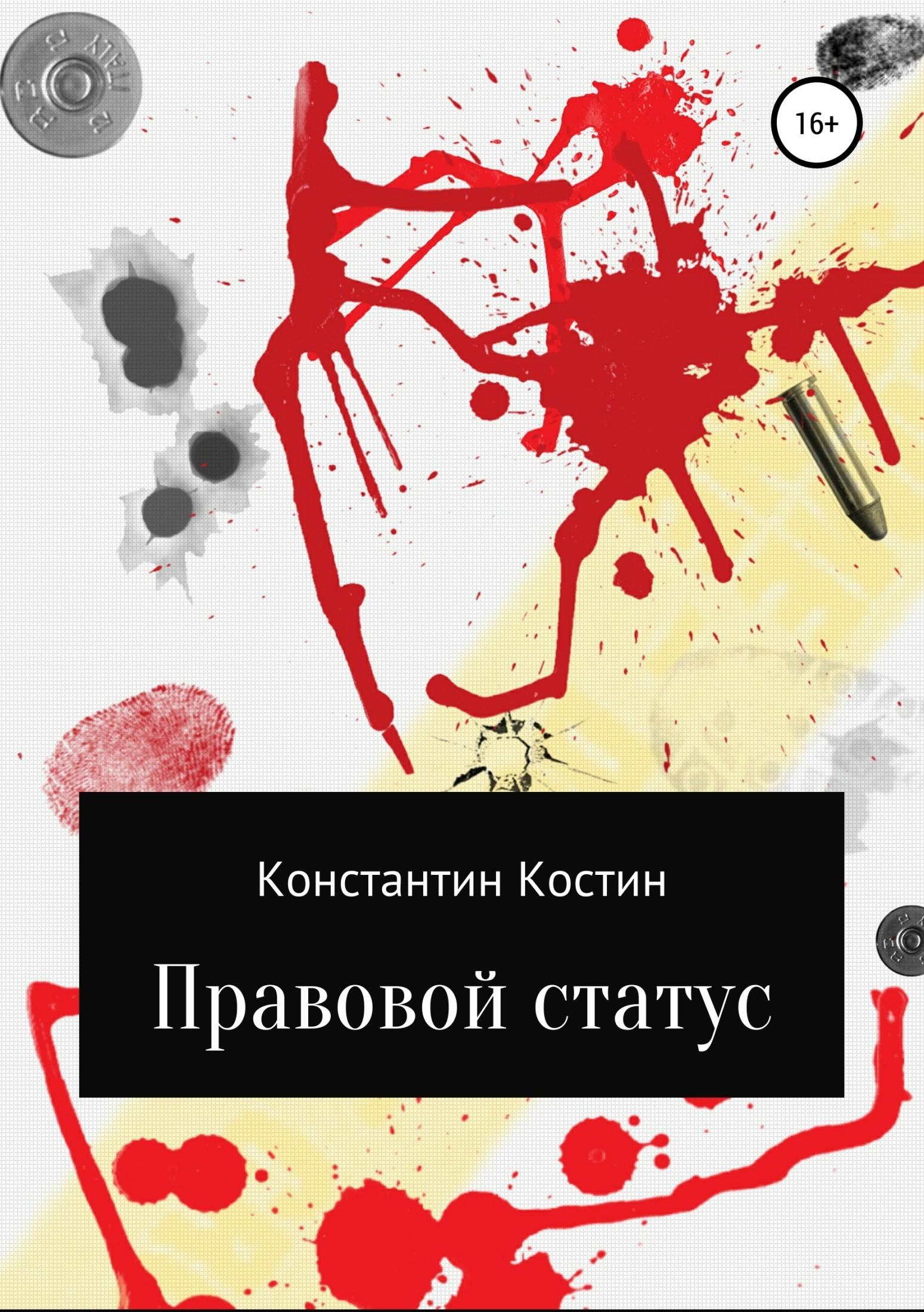 Константин Александрович Костин Правовой статус