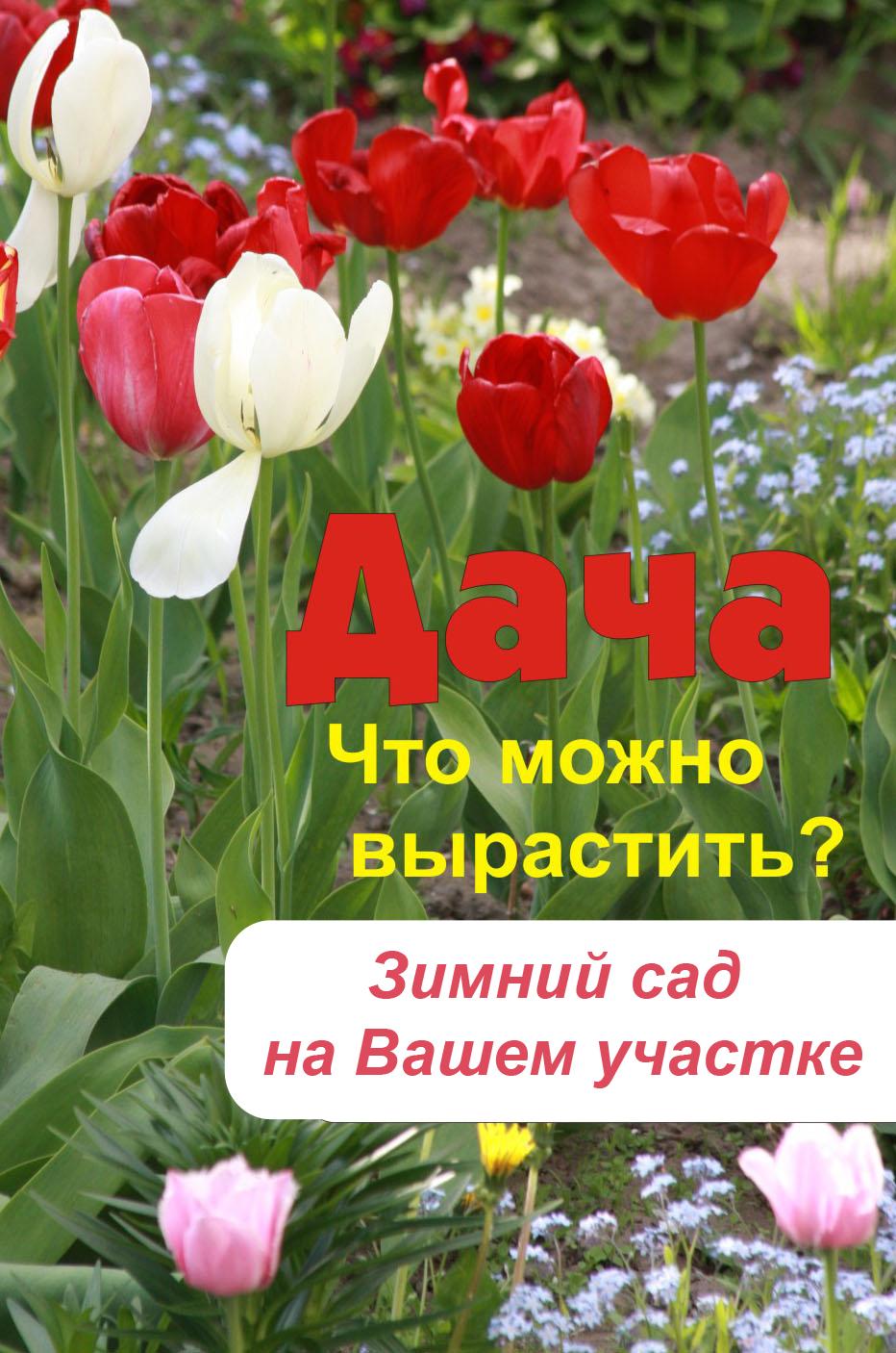 Отсутствует Что можно вырастить? Зимний сад на вашем участке стоимость