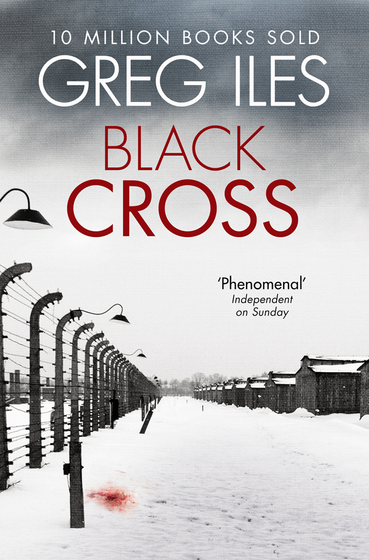 цена Greg Iles Black Cross онлайн в 2017 году