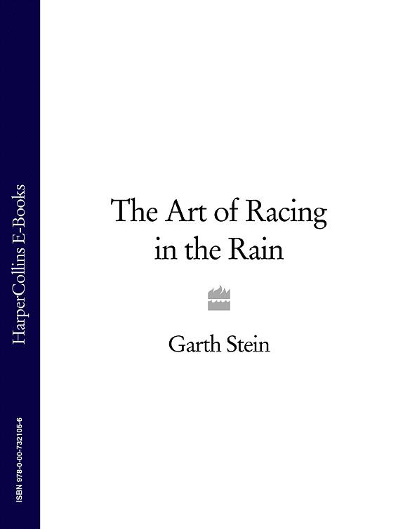 Garth Stein The Art of Racing in the Rain garth nix the ragwitch