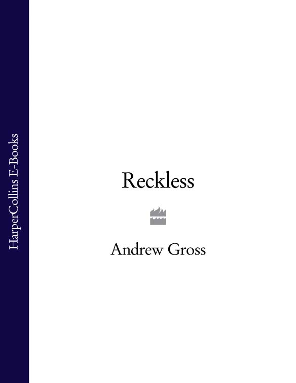 Andrew Gross Reckless andrew gross no way back part 2 of 3