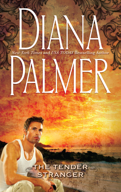 Diana Palmer Tender Stranger battleground