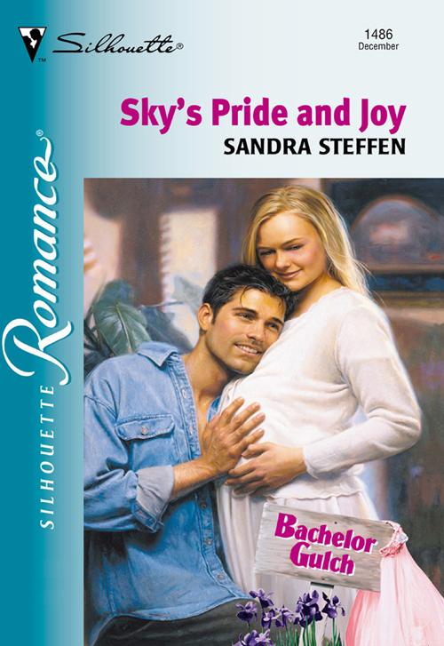 Sandra Steffen Sky's Pride And Joy erich krause угольник clear 60 градусов 225 мм