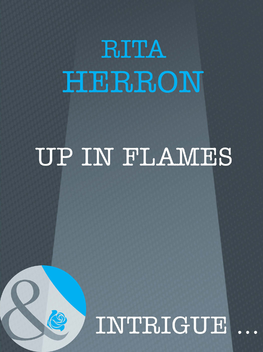 Rita Herron Up in Flames turbulent jet flames from modelling to simulations