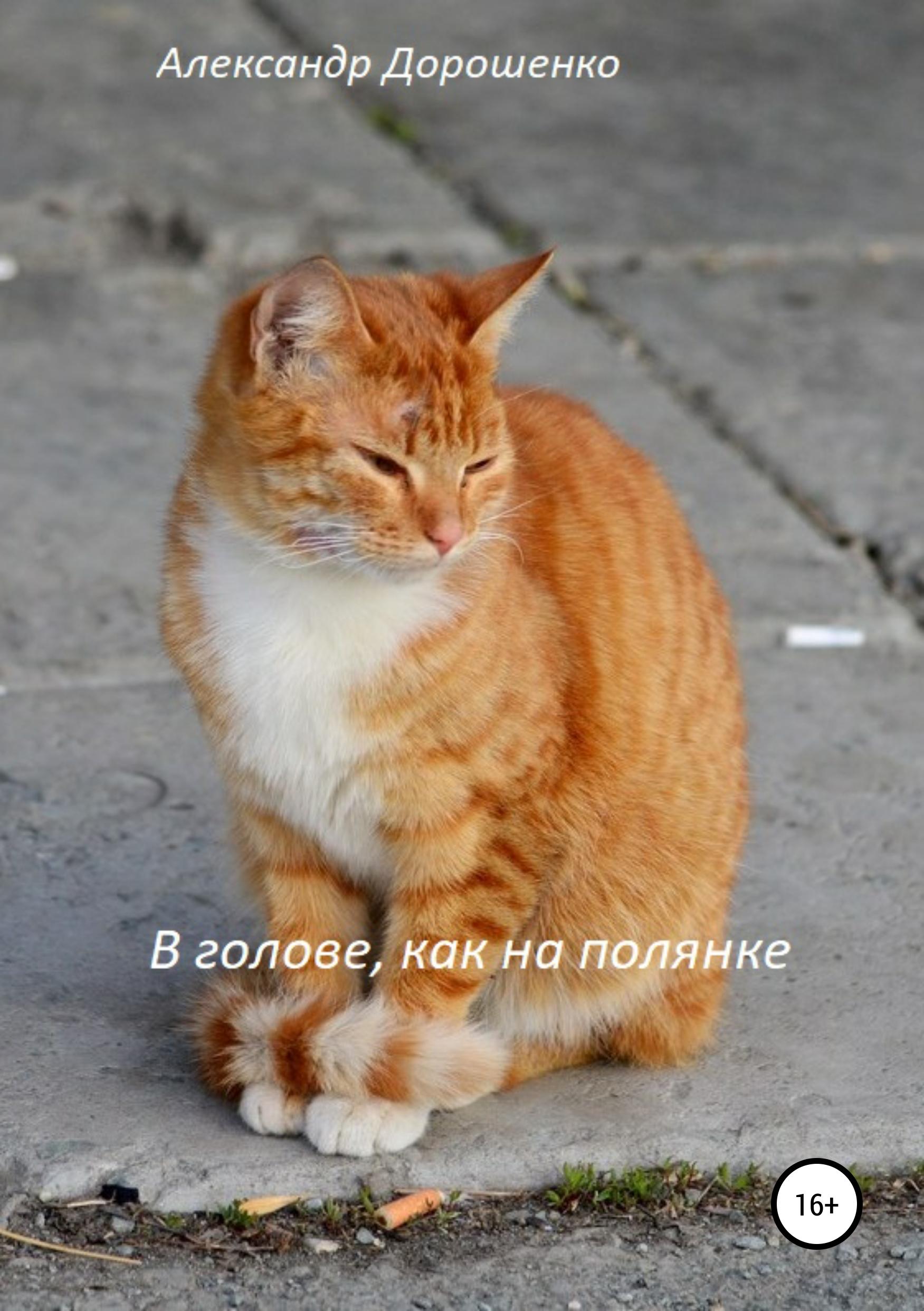 Александр Дмитриевич Дорошенко В голове, как на полянке александр александрович комар размышления онастоящем взгляд вбудущее