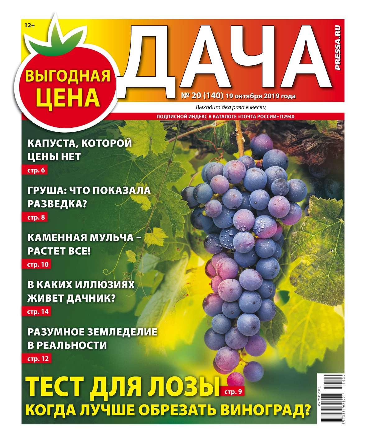 Дача Pressa.ru 20-2019