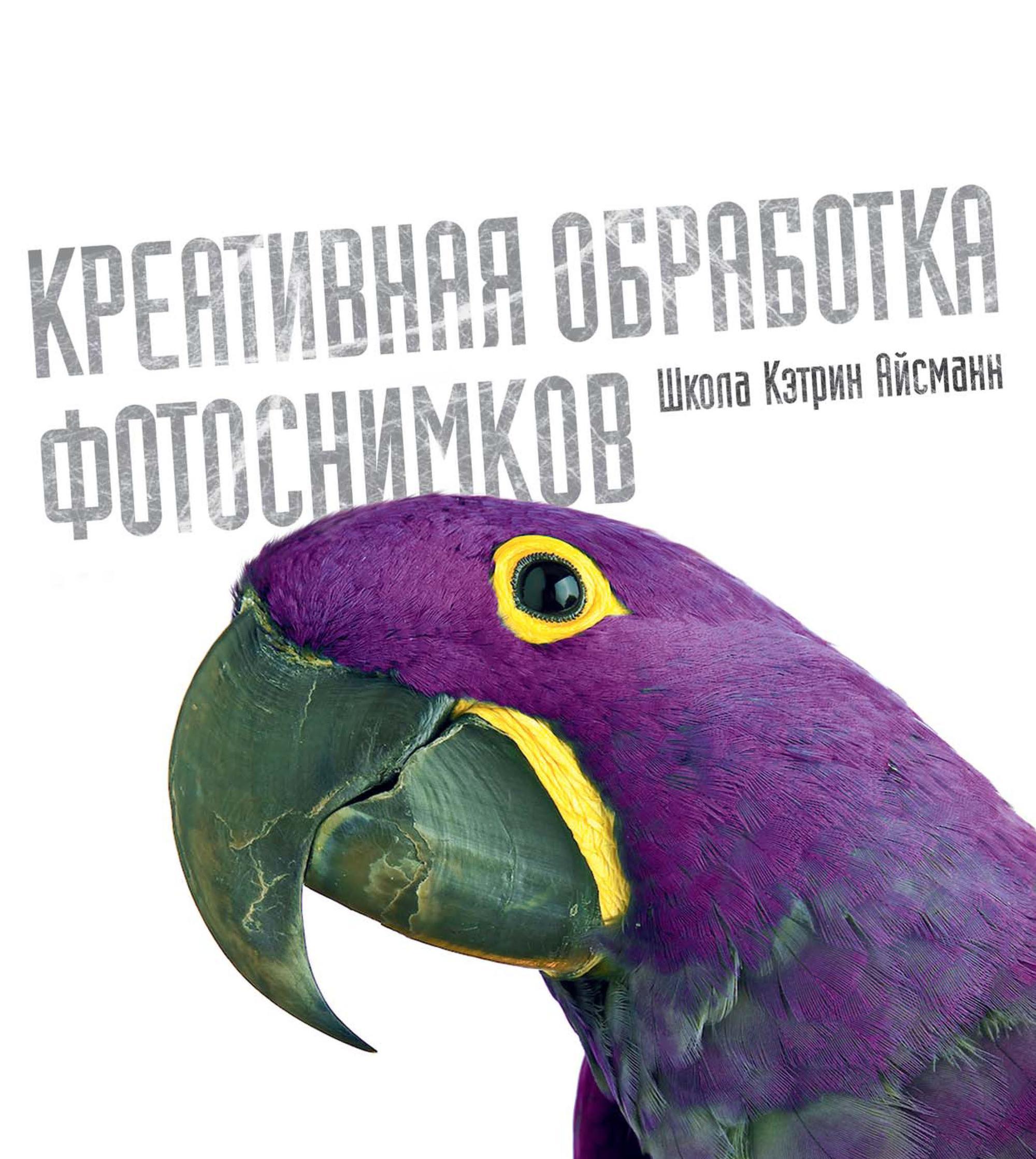 Кэтрин Айсманн, Шон Дагган «Креативная обработка фотоснимков. Школа Кэтрин Айсманн»