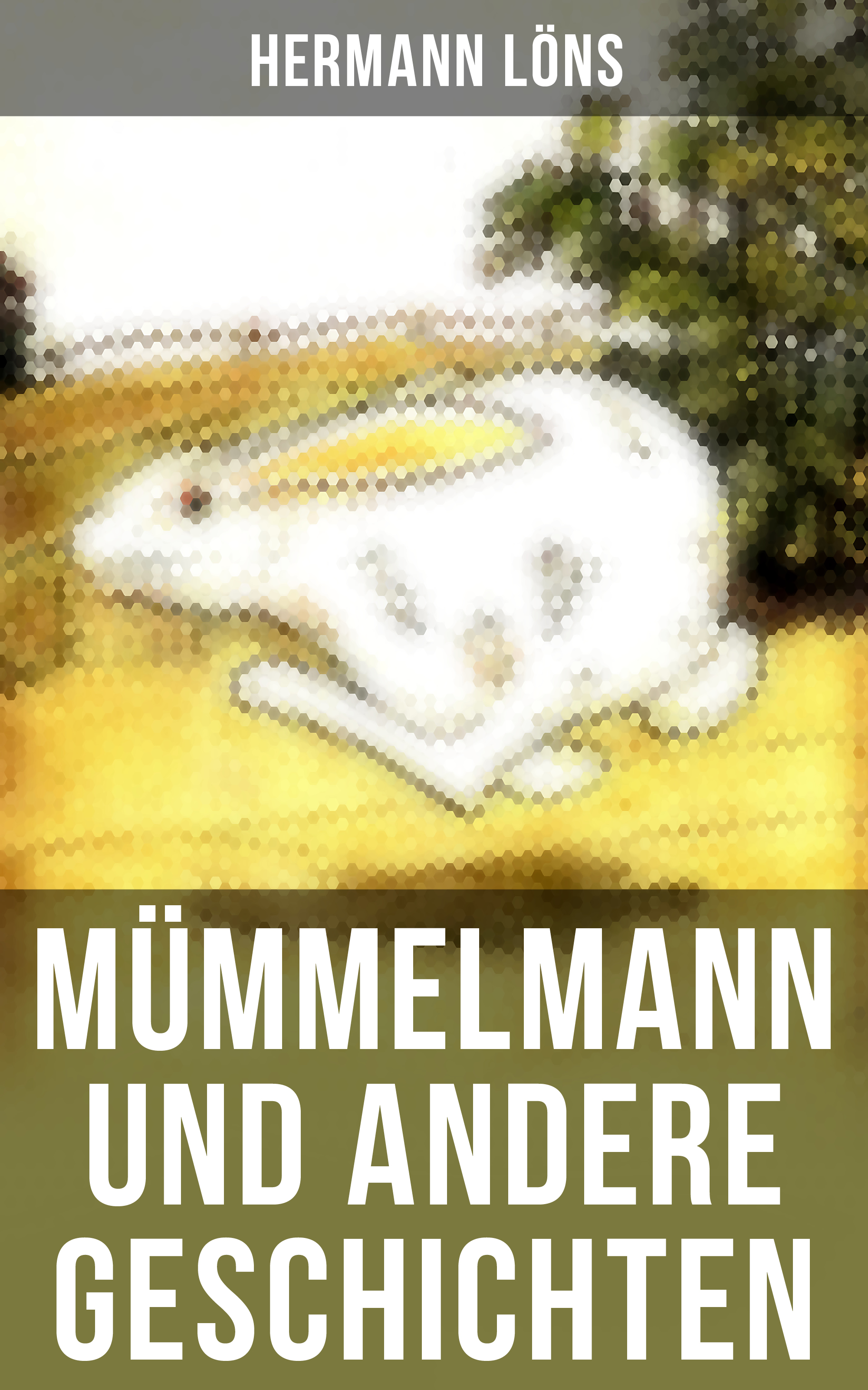 Löns Hermann Mümmelmann und andere Geschichten walter georg waffenschmidt hermann eibel hermann ferdinand gerbis arbeiterschutz und rationalisierung