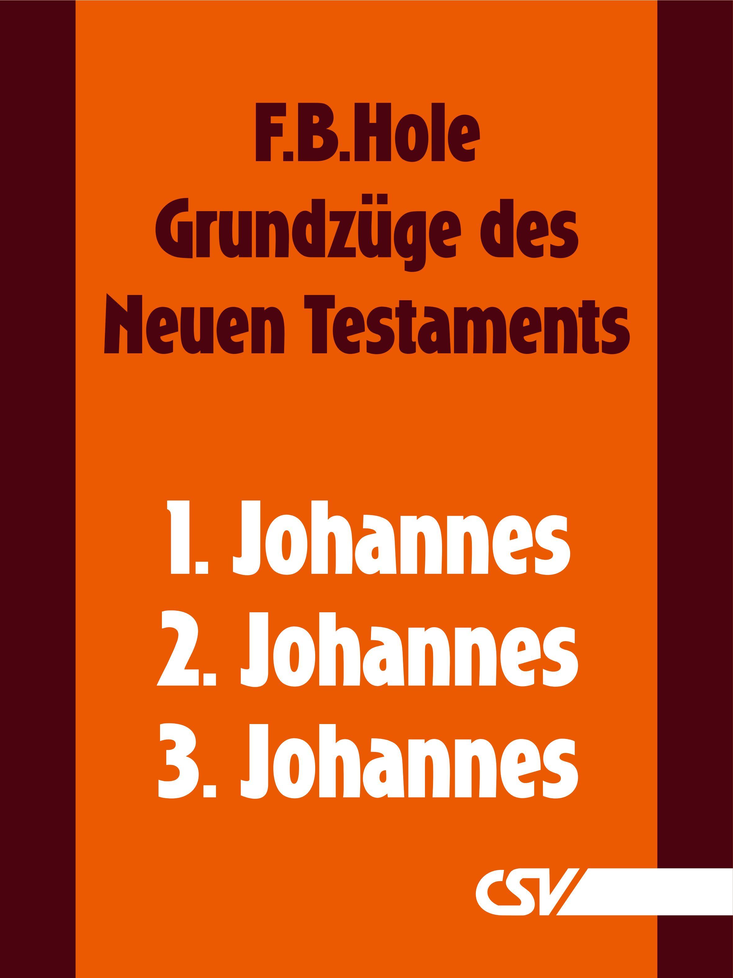 F. B. Hole Grundzüge des Neuen Testaments - 1., 2. & 3. Johannes f b hole grundzüge des neuen testaments 2 korinther