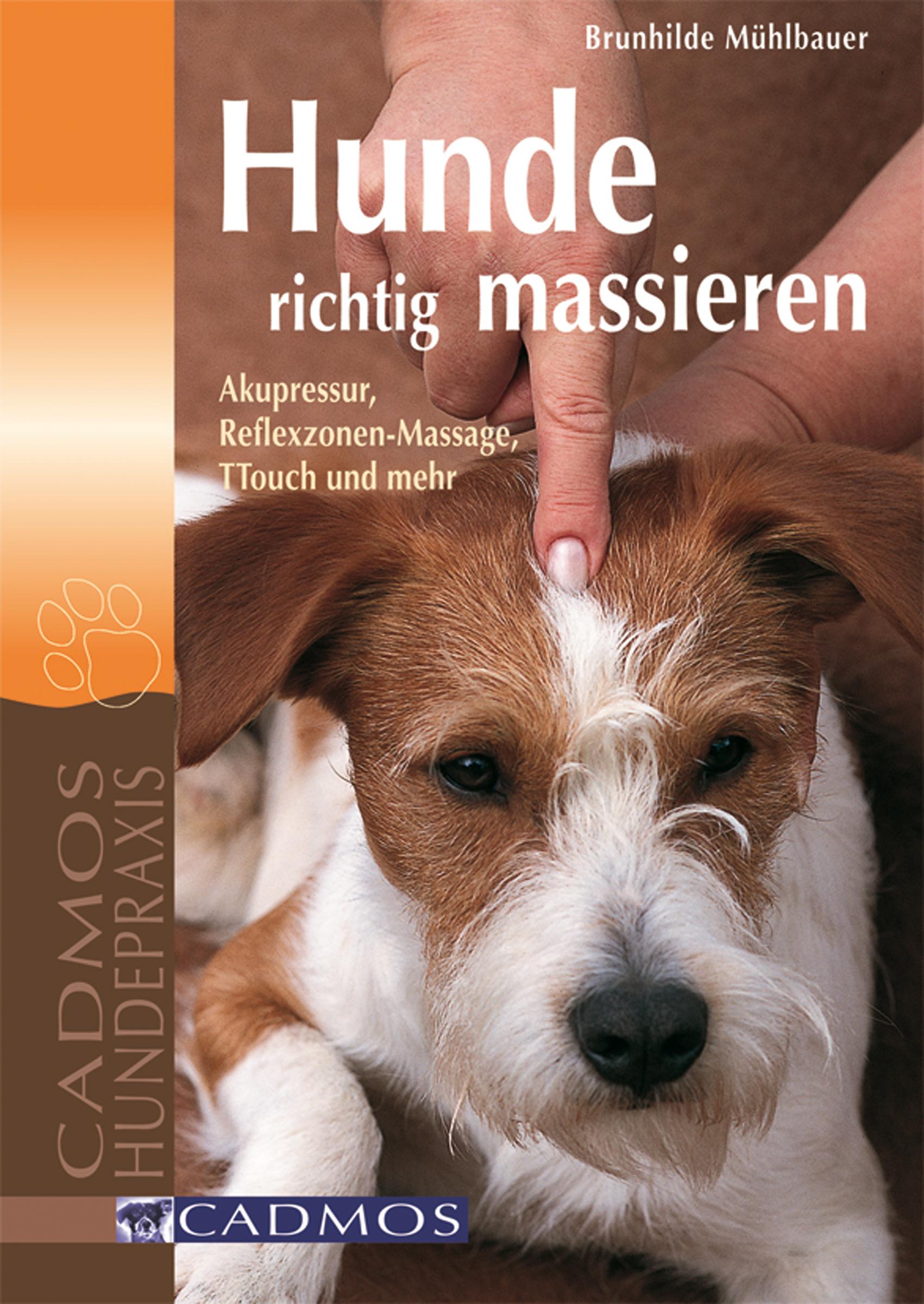 Brunhilde Mühlbauer Hunde richtig massieren walter koelle wasseranalysen richtig beurteilt grundlagen parameter wassertypen inhaltsstoffe page 8