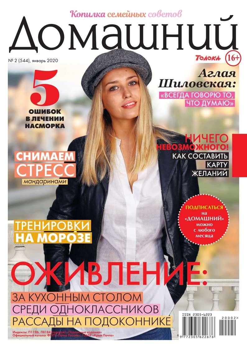 Домашний Журнал 02-2020