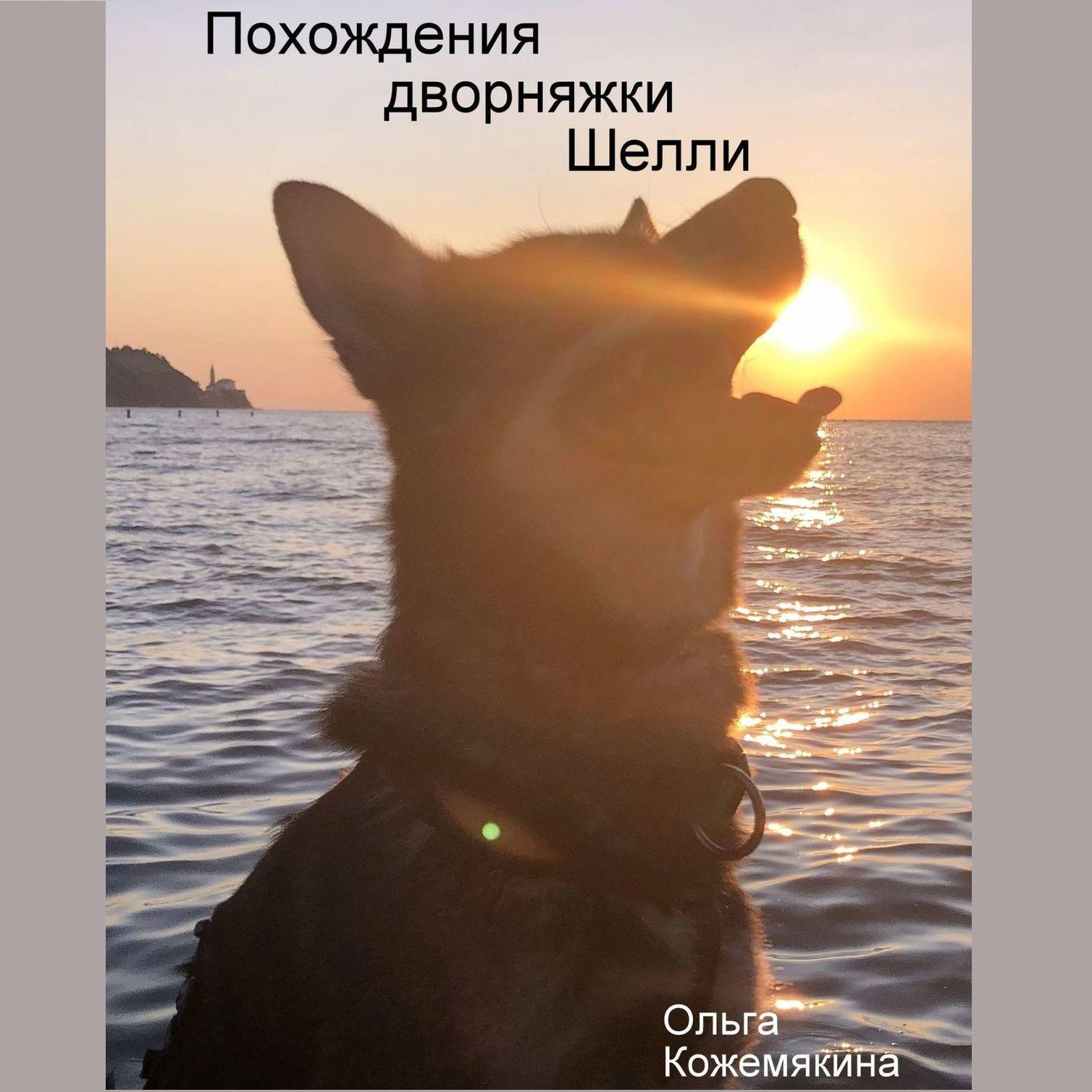 Ольга Кожемякина Похождения дворняжки Шелли ольга шеменева размышления