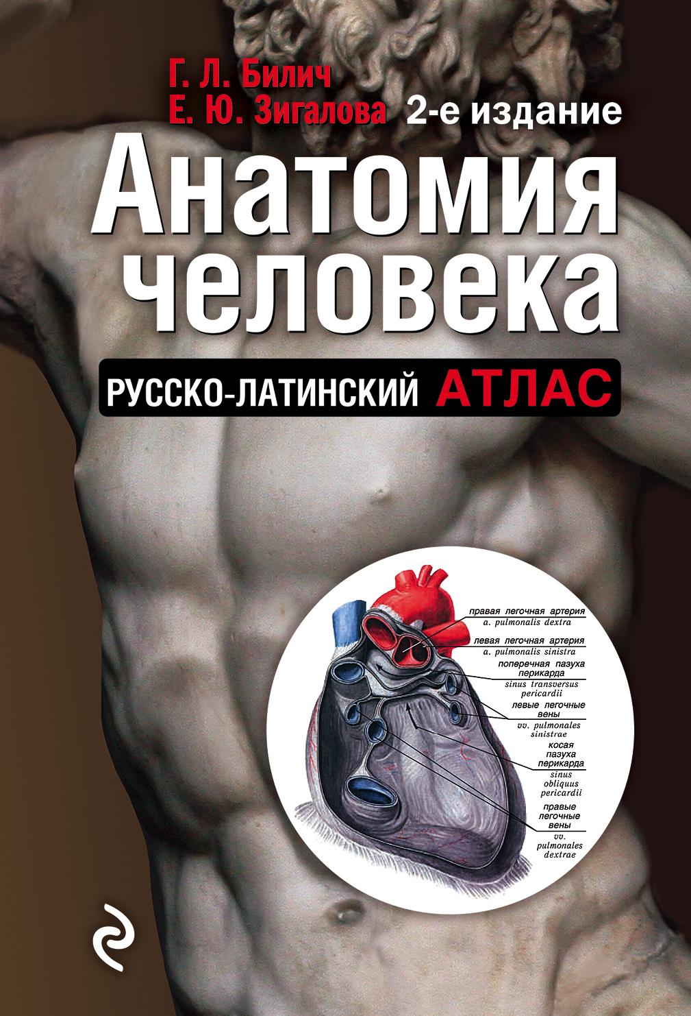Г. Л. Билич Анатомия человека. Русско-латинский атлас л н палычева популярный атлас анатомии человека