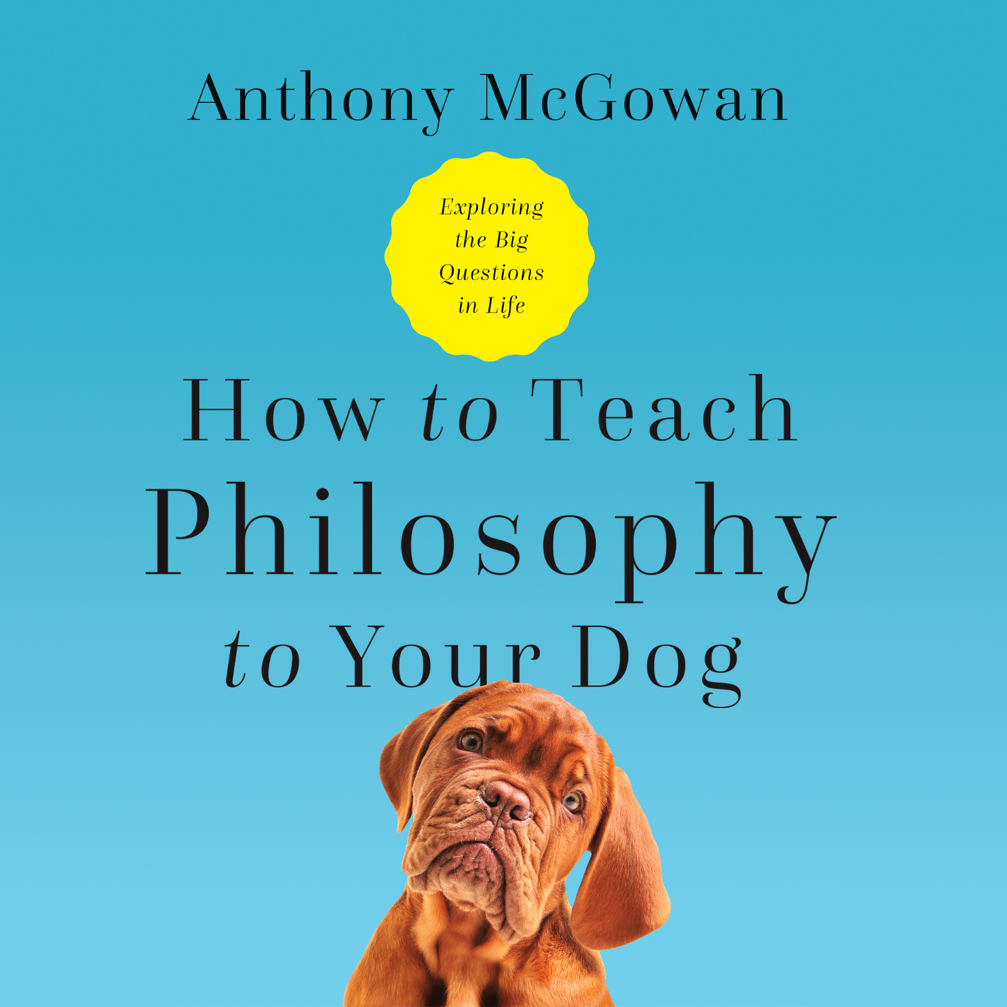 Anthony McGowan How to Teach Philosophy to Your Dog - Exploring the Big Questions in Life (Unabridged) dan spalding how to teach adults plan your class teach your students change the world expanded edition