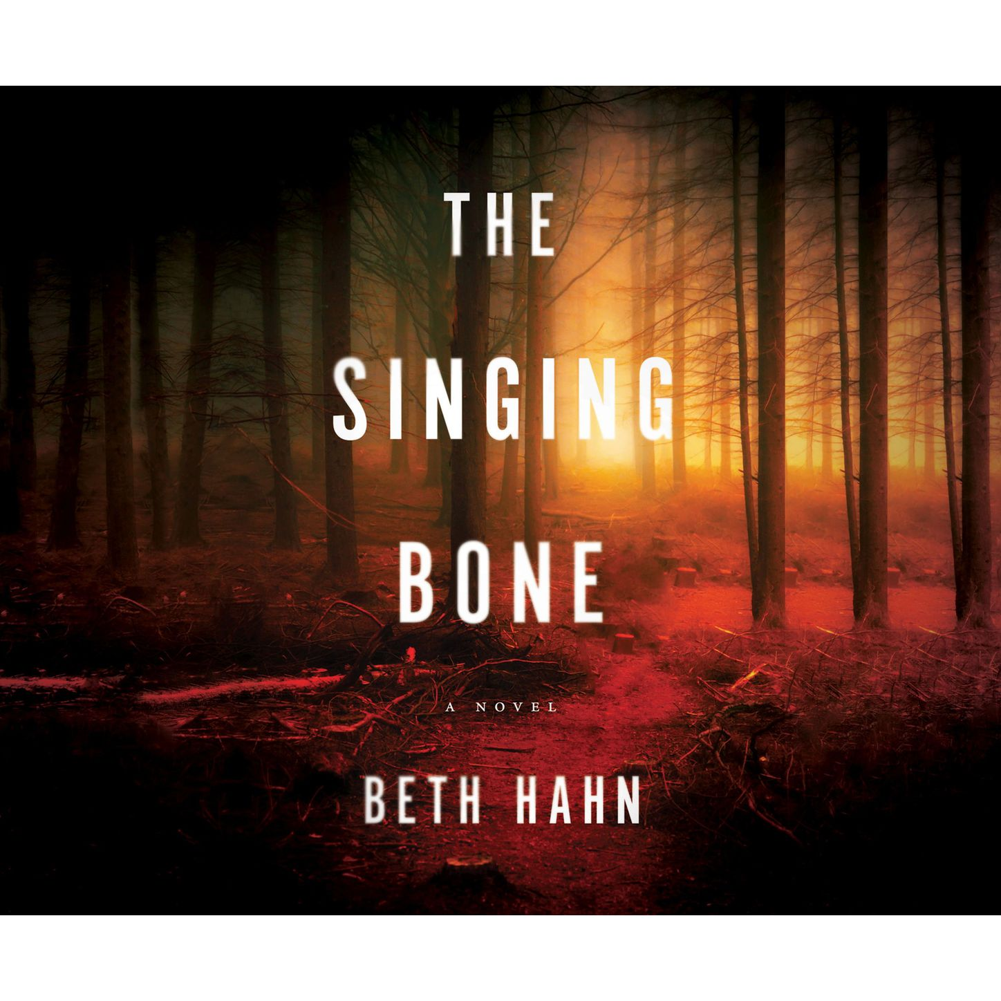 Beth Hahn The Singing Bone (Unabridged) цена 2017