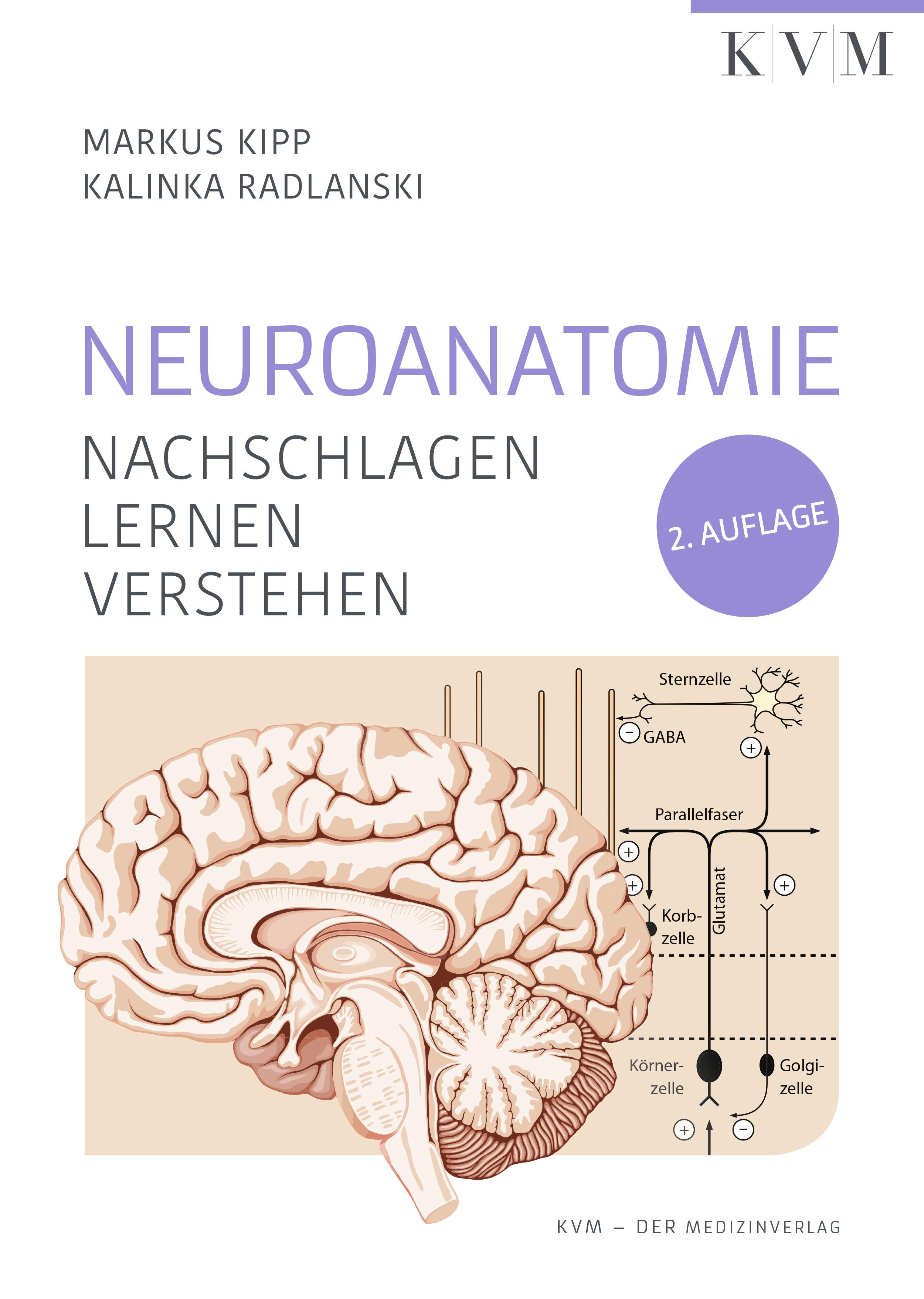 цены Markus Kipp Neuroanatomie