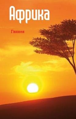Отсутствует Западная Африка: Гвинея лонгслив printio единая гвинея