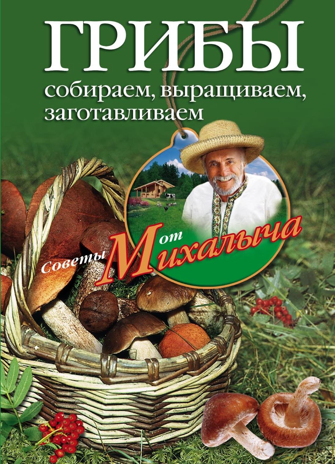 Николай Звонарев Грибы. Собираем, выращиваем, заготавливаем николай звонарев грибы собираем выращиваем заготавливаем