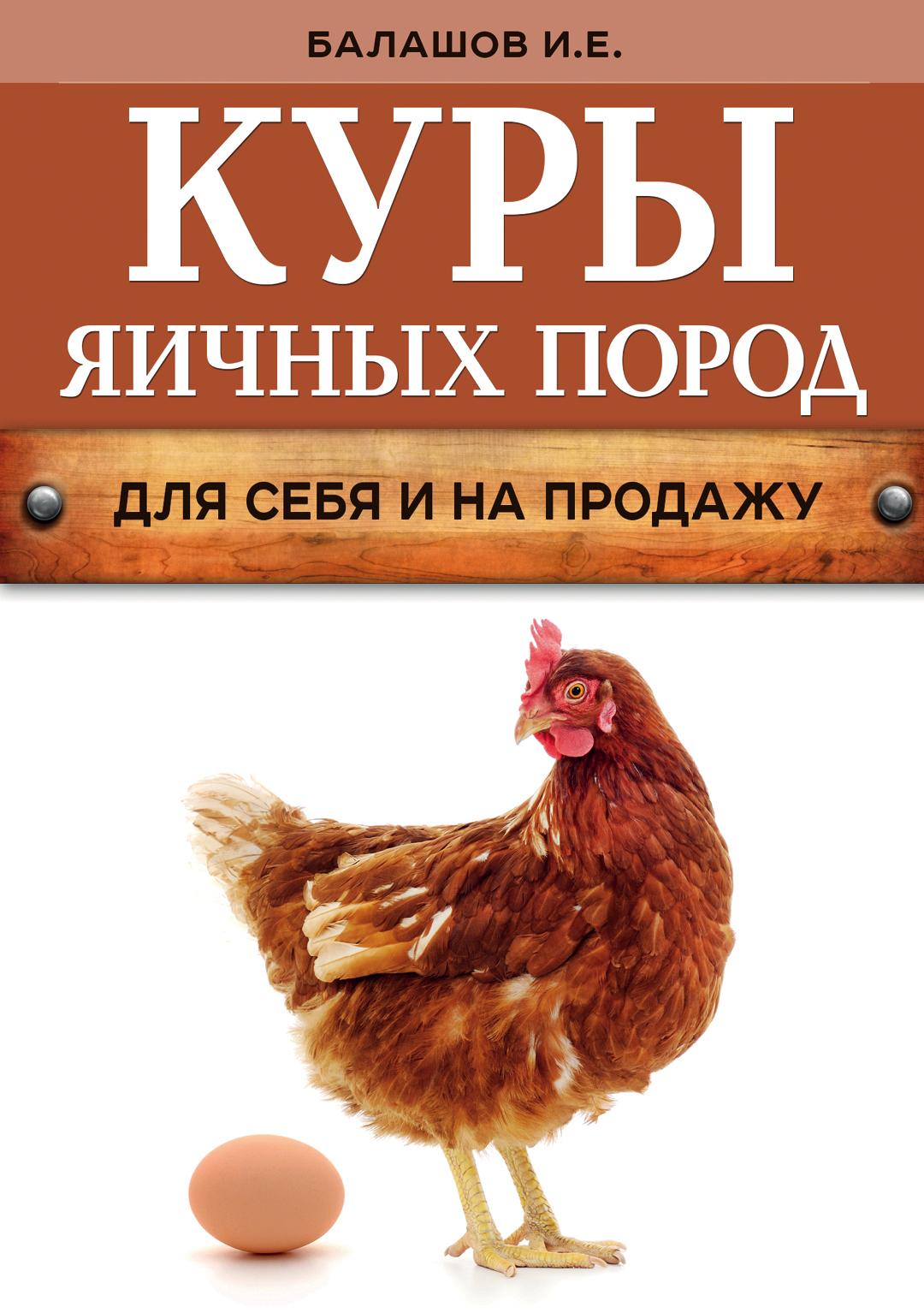 Иван Балашов Куры яичных пород цена 2017