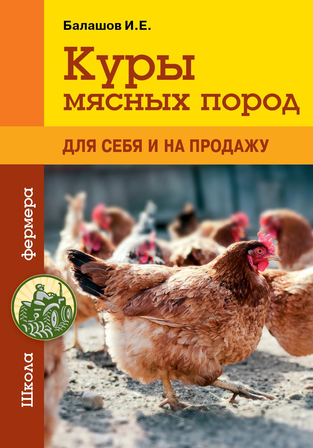 Иван Балашов Куры мясных пород цена 2017